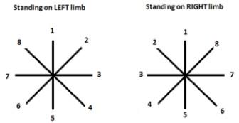 Star test esguince de rodilla